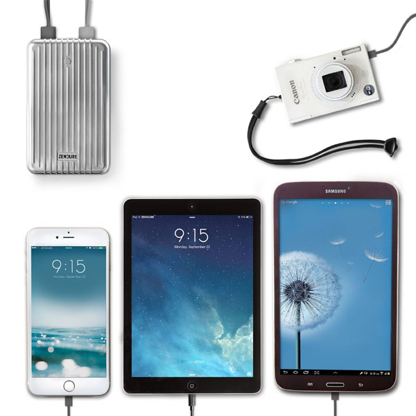 Zendure A8 Pro 4 devices at once